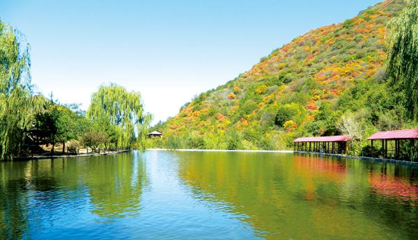 【周末去哪里,郊区等你来】翠枫山自然风景区:漫步天然氧吧感受大自然