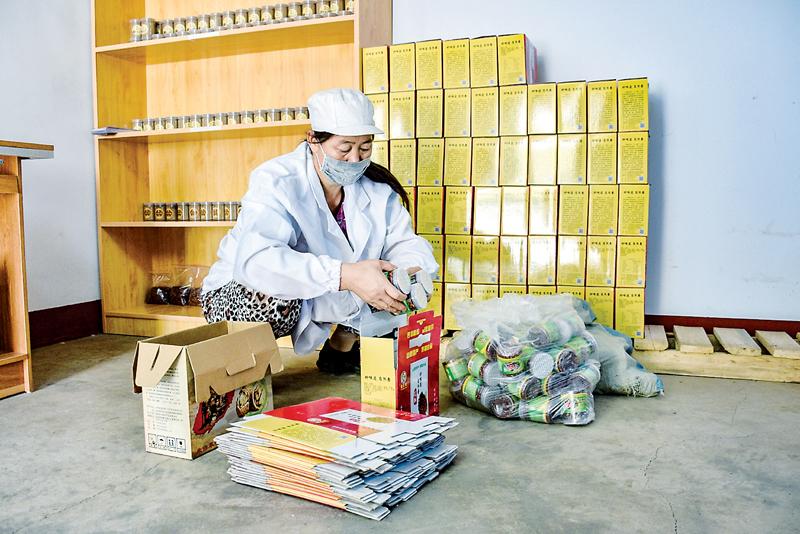 """盂县得心生态农业有限公司:激活""""沉睡""""资产 引领""""绿色""""发展"""